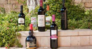 Кипрские винодельни