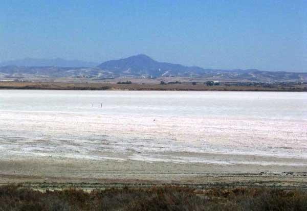 Где находится соленое озеро в Ларнаке