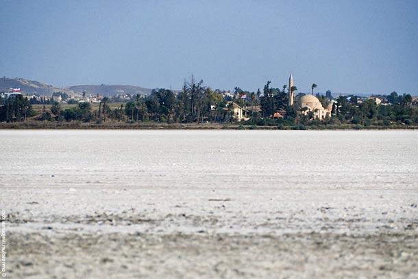 Соленое озеро (Кипр)