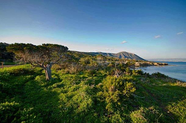 Национальный парк Акамас в Пафосе