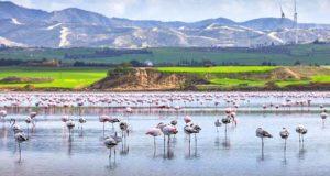 Соленое озеро в Ларнаке (Кипр)