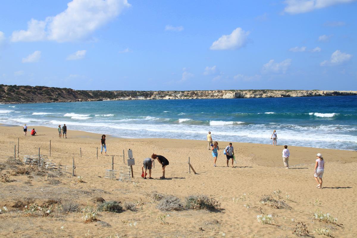 черепаший пляж Лара Бич Кипр